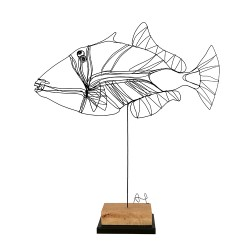 TRIGGERFISH wire sculpture by A. Twose